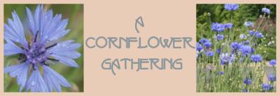 A Cornflower Gathering