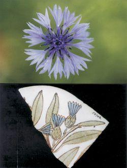 European cornflower and Egyptian tile fragment